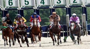Bet365 Horseracing