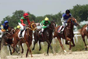 SkyBet Horseracing 5